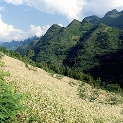 Mountain scenery from Xin Man to Bac ha