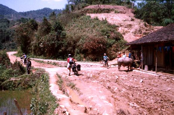 Davi village
