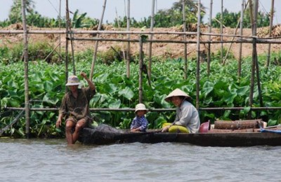 Fisherman on mekong river - Caibe floating market
