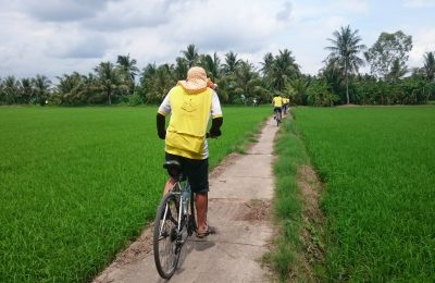 Cycling through rice paddy in TraVinh